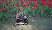 image of 24th  - taken at ottawas famed tulip festival may 24th - JPG