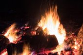 Night Bonfire On A Blurred Background. Bright Bonfire. Blurred Focus. poster