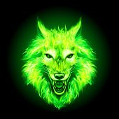 Head Of Aggressive Fire Woolf. Concept Image Of A Green Wolf And Flame On A Black Background poster