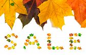 Autumn Maple-leafs Background And Word Sale Composed Of Autumnal Maple Leaves. Isolated On White Bac poster