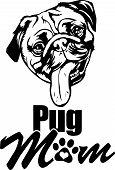 Animal Dog Pug 7 Mom.eps poster