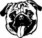 Animal Dog Pug 7A.eps poster