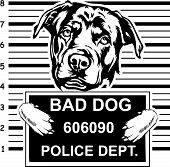 Animal Dog Rottweiler 6 Head.eps poster