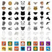 Wild Animal Cartoon Icons In Set Collection For Design. Mammal And Bird Vector Symbol Stock Web Illu poster