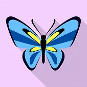 Nice Blue Butterfly Icon. Flat Illustration Of Nice Blue Butterfly Icon For Web Design poster
