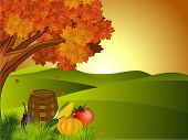 image of indian apple  - Thanksgiving background - JPG