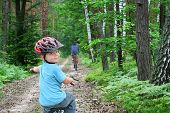 Bike Trip Through The Forest