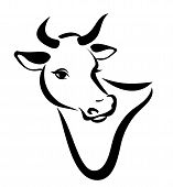 image of cow head  - happy cow portrait isolated vector silhouette in simple black lines - JPG
