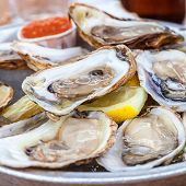 stock photo of oyster shell  - A platter of fresh raw oysters on ice at an outdoor cafe - JPG