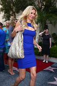 LOS ANGELES - MAY 31:  Brandi Glanville at the David Foster Hollywood Walk of Fame Star Ceremony at