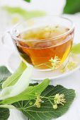 image of lime-blossom  - cup of lime tea with lime blossoms - JPG