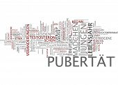 image of puberty  - Word cloud  - JPG