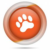 picture of bear tracks  - Glossy icon with white design on orange plastic background - JPG