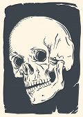 Isolated skull illustration on vintage broken paper