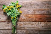 pic of celandine  - Bunch of celandine on wooden background medicinal herb - JPG