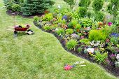 stock photo of manicured lawn  - High angle view from a distance of a wheelbarrow standing on a green lawn alongside a manicured flowerbed while planting a beautfiul colorful celosia garden with ornamental plants - JPG