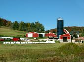 stock photo of dairy barn  - Beautiful and well maintained midwest dairy farm - JPG