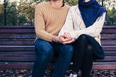 image of youg  - A youg couple is sitting and holding each other on a park bench in autumn - JPG