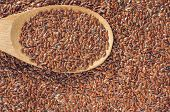 pic of flax seed oil  - flax seeds with a wooden spoon on burlap background - JPG