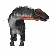 foto of apatosaurus  - 3D digital render of a dinosaur apatosaurus isolated on white background - JPG