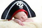 picture of pirate hat  - a newborn is wearing big pirate hat - JPG