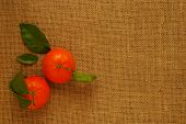 stock photo of satsuma  - Two Orange Clementines with Leaves on Hessian - JPG
