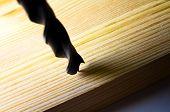 foto of drill bit  - Drill bit close up on wooden plank - JPG