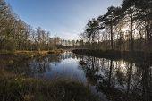 stock photo of hamlet  - The Nonnenven nature reserve in the hamlet Kotten nearby Winterswijk in the Netherlands - JPG