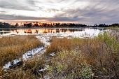 picture of inlet  - A natural oyster bed as seen at sunset on the Lynhaven Inlet off the Chesapeake Bay  - JPG
