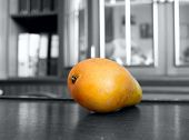 picture of nibbling  - Pear nibble - JPG