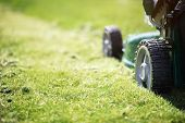 image of lawn grass  - Mowing or cutting the long grass with a green lawn mower in the summer sun - JPG