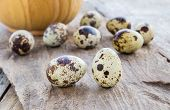 image of quail  - Close up Quail eggs on a wooden table background - JPG