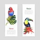 image of rainforest  - Tropical  rainforest vacation vertical banners set with exotic parrot and toucan bird watercolor  abstract  isolated vector illustration - JPG