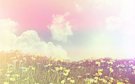 picture of buttercup  - 3D render of a landscape of buttercups and daisies against a sunny blue sky with retro style - JPG