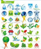 COLLECTION_2   Ecology and botanic Icon Set for design use, vector illustration. Series symbols for