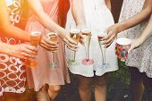 Hands Of Woman Holding Colorful Glasses And Toasting Champagne At Joyful Party In Summer Park, Brida poster
