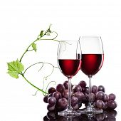 stock photo of red wine  - Red wine in glasses with grape and rod isolated on white - JPG
