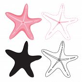 Starfish Worksheet Vector Design, Starfish Artwork Vector Design poster
