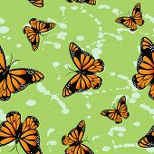 Butterflys On Green Background.
