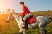 The Horsewoman On A Red Horse. Horse Riding. Horse Racing. Rider On A Horse. poster