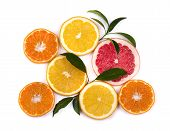Citrus Fruits Isolated On White Background. Isolated Citrus Fruits. Pieces Of Mandarin, Pink Grapefr poster