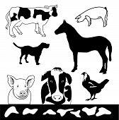 stock photo of farm animals  - Farm Animals is hand drawn original artwork - JPG