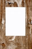 Laminated Blank White Paper Stuck On An Old Weathered Tatty Outside Noticeboard. poster