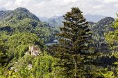 Hohenschwangau Surrounding By Greenery
