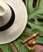 stock photo of tobacco leaf  - cigar on a glass of rum panama and green leaf - JPG