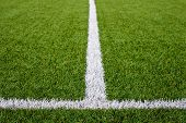 image of grass area  - Limit lines of a sports grass field for Sports Backgrounds - JPG