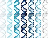 image of double helix  - Vector  - JPG