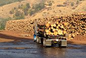 stock photo of logging truck  - A log truck delivers its load to a sawmill in Oregon - JPG