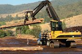 stock photo of logging truck  - Tracked Loader unloading a log truck for log grading in a sawmill in Oregon - JPG