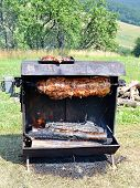 stock photo of spit-roast  - roasted suckling pig on wood and charcoal outdoors - JPG